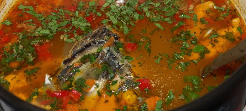 Borș de pește cu leuștean proaspăt