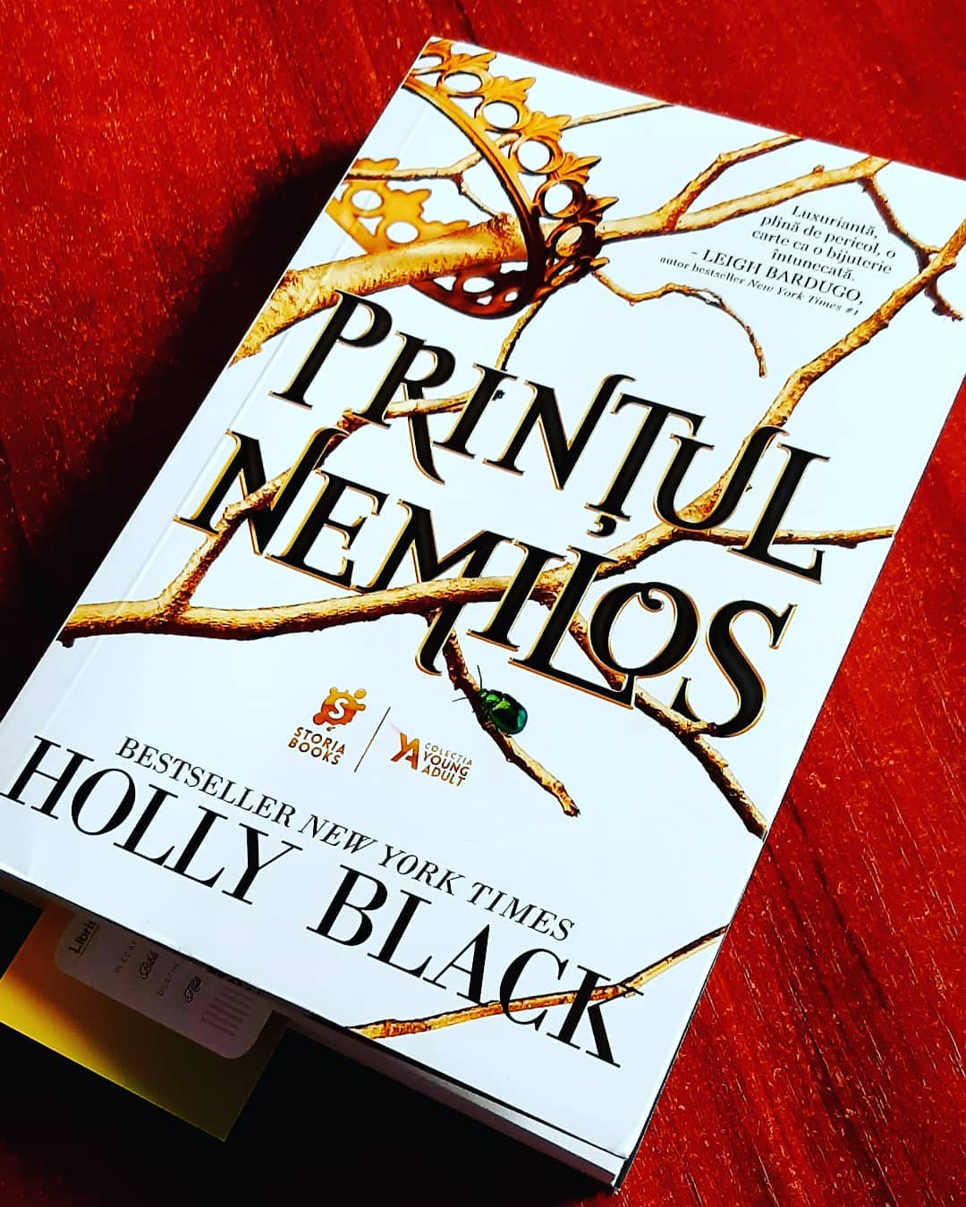 Prințul nemilos (Făpturile Văzduhului #1) de Holly Black